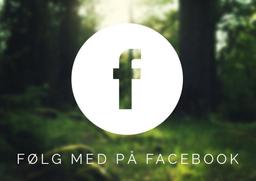 indlæg_facebook
